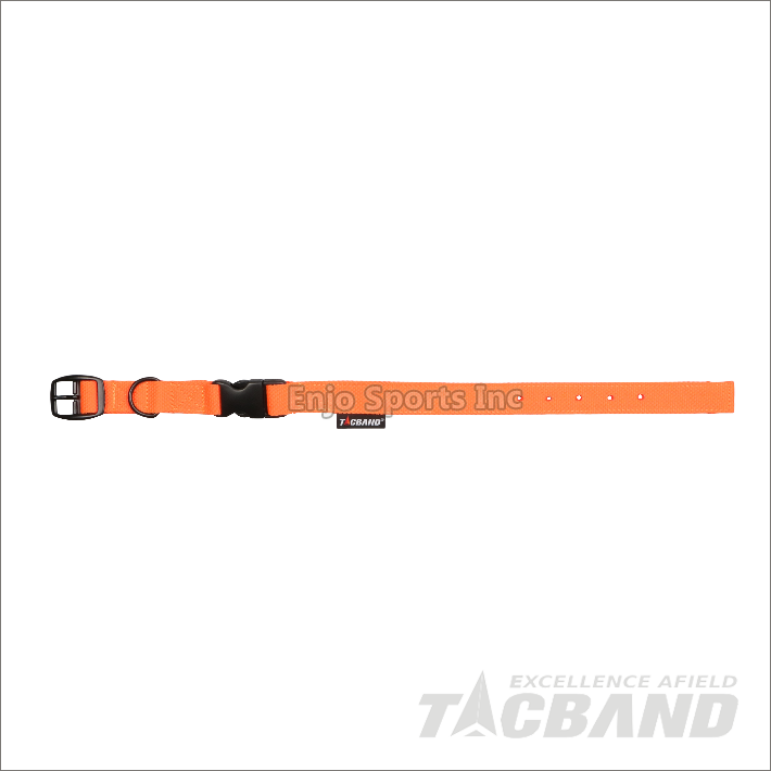 DCG01 | Dog Leash & Collar