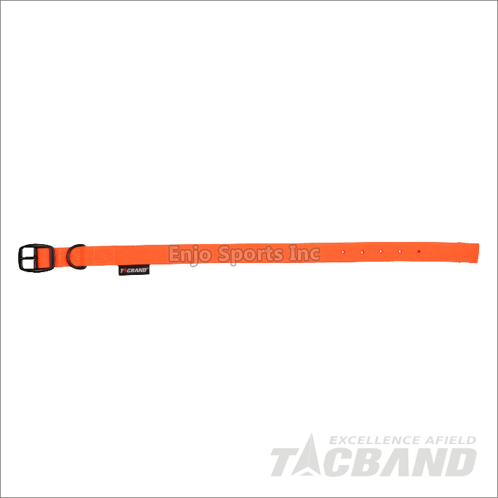 DCG02 | Dog Leash & Collar