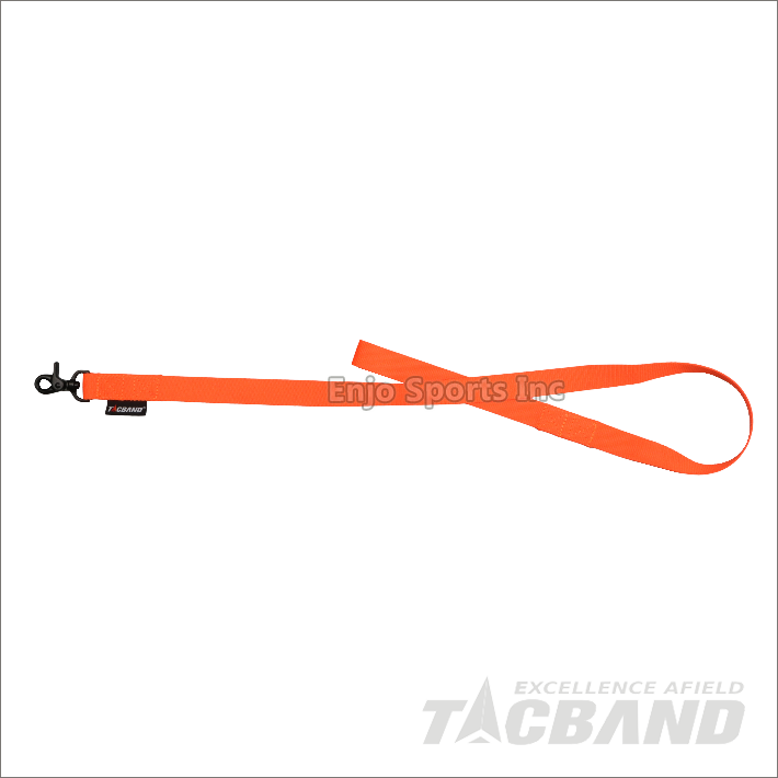 DLG02 | Dog Leash & Collar
